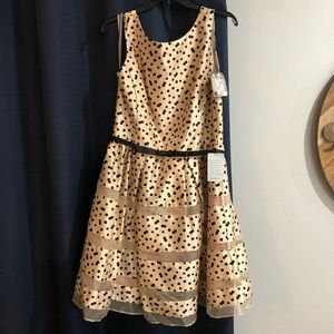 NWT Taylor Polkadot Dress